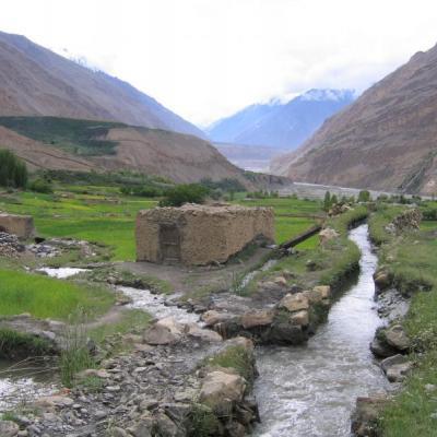2005 Pakistan tour